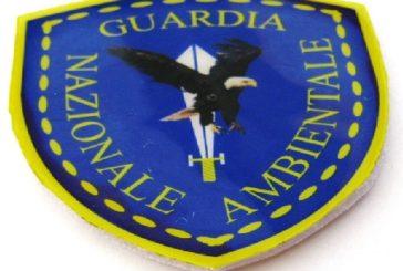 San Benedetto, diventa Guardia Giurata Volontaria per la Regione Marche