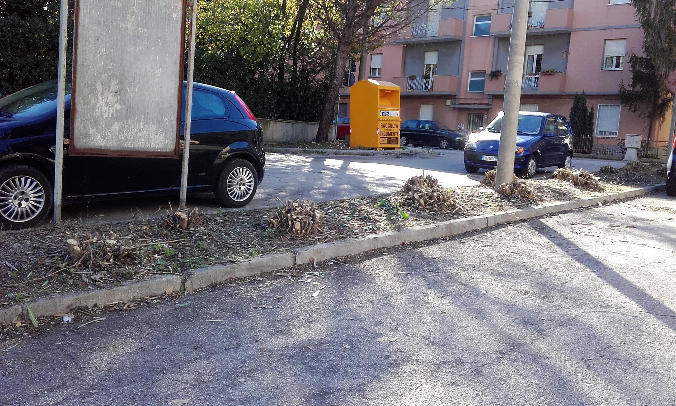 Ufficio Verde Ancona : Ancona operazione decoro in città in vista delle prossime