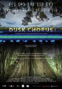 Pesaro, la genesi della Sonosfera nel documentario Dusk Chorus